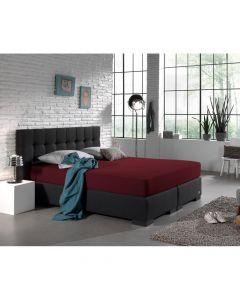 Dreamhouse - Jersey - Bordeaux - 140 x 200/220