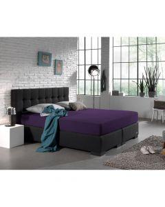 Dreamhouse - Jersey - Paars - 160/180 x 200/220